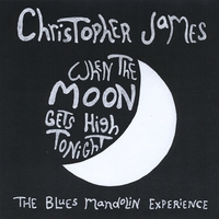 Christopher James | When the Moon Gets High Tonight (The Blues Mandolin Experience)