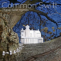 Common Swift | These Safe Homes