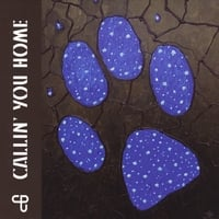 Coyote Poets of the Universe | Callin' You Home