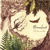 Crowfoot | As the Crow Flies