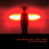 Crypto Bass | Blinded By the Life