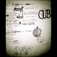 Cub | Accept What Is