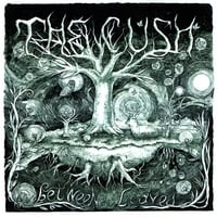 The Cush | Between the Leaves