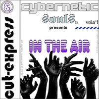 Cut-Express & Cybernetic Souls | Hands in the Air (Vol.n°1)
