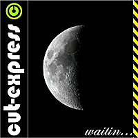 Cut-Express | Waitin (For the Moon)