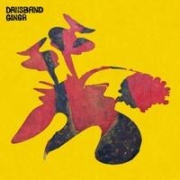 Dan Ionescu | Dansband Ginga