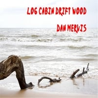 Dan Mervis | Log Cabin Drift Wood
