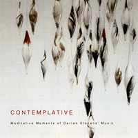 Darian Stavans | Contemplative / Meditative Moments of Darian Stavans' Music