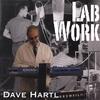 Dave Hartl: Lab Work