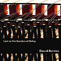 David Barnes | Lost in the Garden of Delay