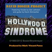 David Bosier Project | Hollywood Sindrome
