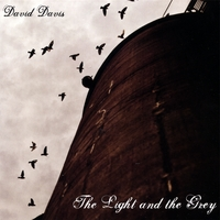 David Davis | The Light And The Grey