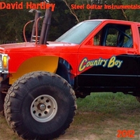 David Hartley | Country Boy