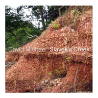 David Michael | Slavek's Creek