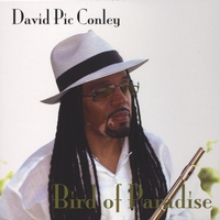David Pic Conley | Bird Of Paradise