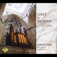 David Pipe | Liszt and Brahms: Original Works and Transcriptions for Organ