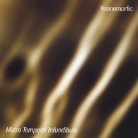 Album Micro Temporal Infundibula by Paul Pellegrin