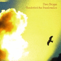 Dave Brogan | Thunderbird Sun Transformation