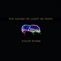David Dunn | The Sound of Light in Trees