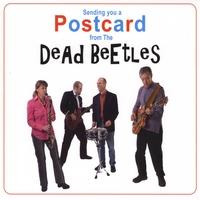The Dead Beetles | Sending You a Postcard From the Dead Beetles