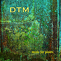 Deep Tree Mantra | Music For Plants