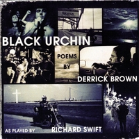 Black Urchin