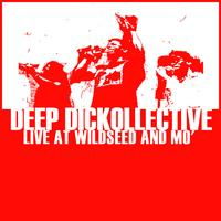 Deep Dickollective | Live at Wildseed and Mo'