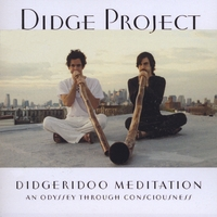Didge Project | Didgeridoo Meditation: An Odyssey through Consciousness