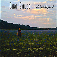 Dino Soldo | Notes from the Ground