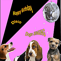 Dogs Singing | Happy Birthday Disco (Singing Dogs)