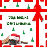 Dogs Singing | Dogs Singing White Christmas