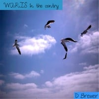 Donnie Brewer | Waris in the Contry