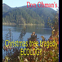 Don Ohman | Christmas Tree Tragedy Ecology