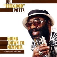 Dr Feelgood Potts | Going Down To Memphis