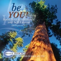 Dr. Friedemann Schaub | Be You: Boost Your Confidence and Self-Esteem