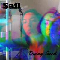 Dying Seed | Sail