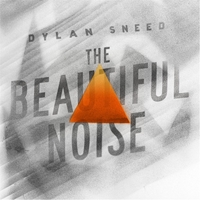 Dylan Sneed | The Beautiful Noise
