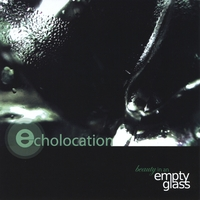 Echolocation | Beauty in an Empty Glass