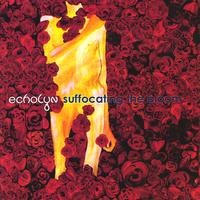 echolyn | Suffocating the Bloom