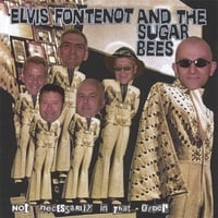 Elvis Fontenot And The Sugar Bees | Not Necessarily In That Order
