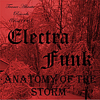Electra Funk | Anatomy of the Storm