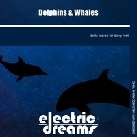 Electric Dreams | Dolphins and Whales