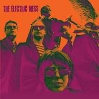 The Electric Mess | The Electric Mess