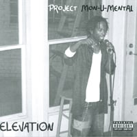 Elevation | Project Monumental
