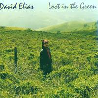 David Elias | Lost in the Green