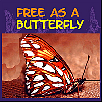 Ellis Hadlock | Free As A Butterfly