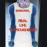 Emmoral | Real Life Thoroughbred
