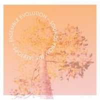 Ensemble Evolution | Sounds from the Treetops