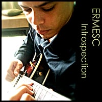 Ermesc | Introspection