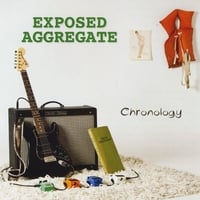 Exposed Aggregate | Chronology
